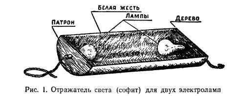 Выращивание огурцов в теплицах: сорта, правила, размещение, подвязка, опыление, уборка, омоложение