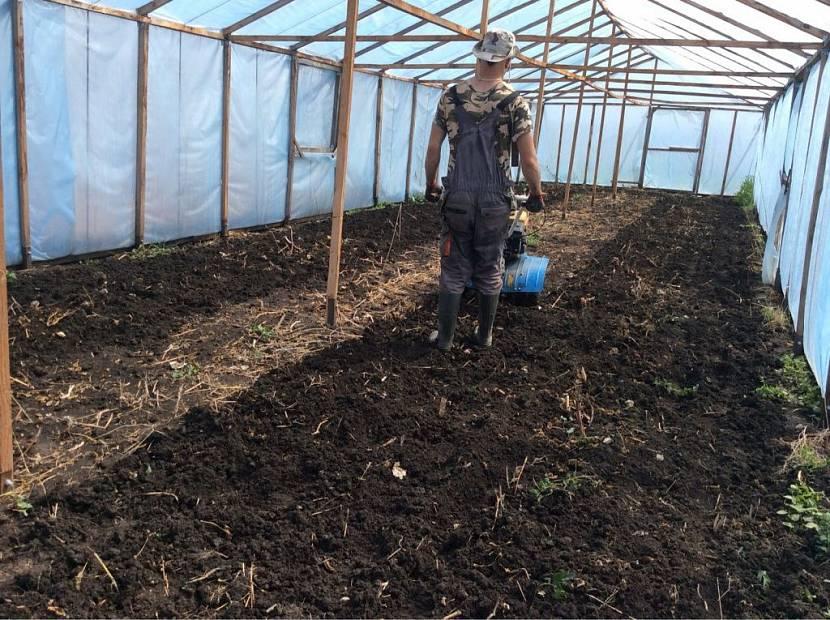 Подготовка и смена почвы в теплицах: порядок, способы