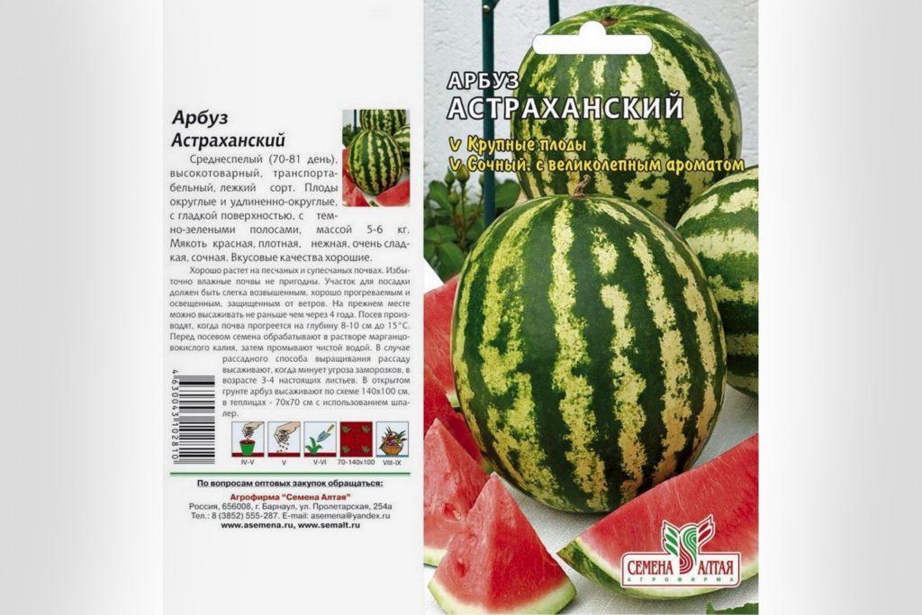 Характеристики Астраханского арбуза и правила выращивания: характеристики, свойства, методы
